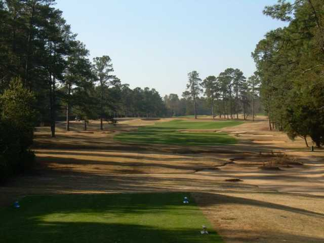 A view from a tee at Palmetto Golf Club