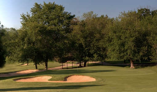 A view of the 8th green at Course #1 from Cog Hill Golf and Country Club