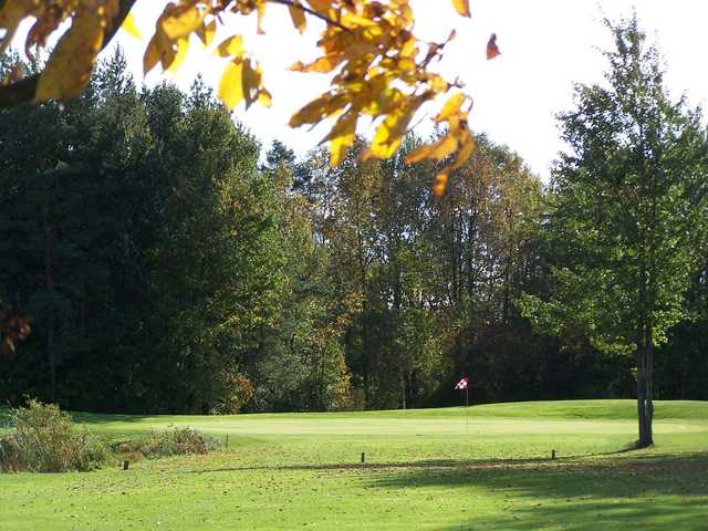 A sunny day view of a green at Rogues Roost Golf & Country Club