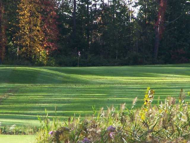 A view from Rogues Roost Golf & Country Club