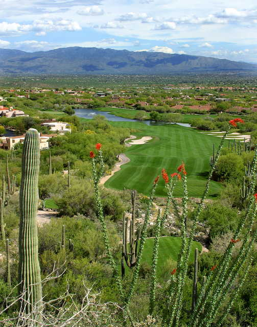 Mountain at Ventana Canyon: View from #4