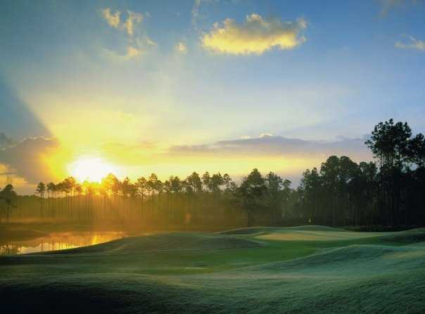 A sunny view from LPGA International