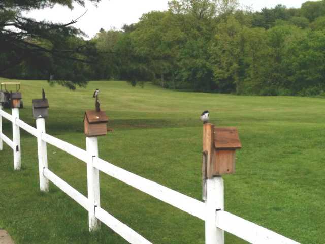 A view of a fairway at Salmon Falls Golf Club