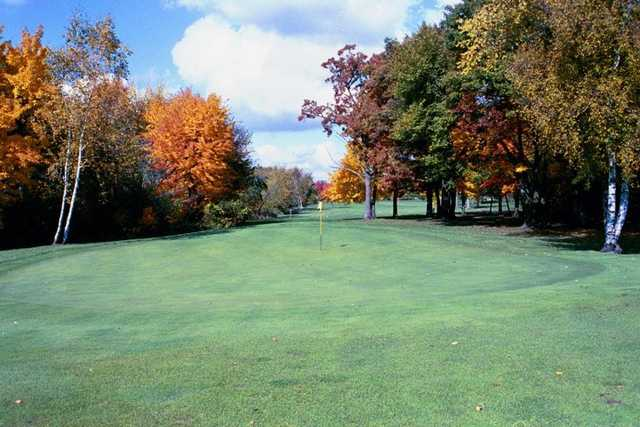 A view of a green at Viking Meadows Golf Club