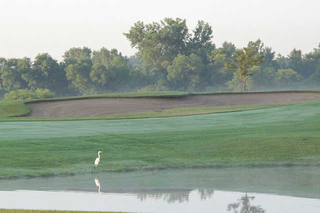 A view over the water from Crystal Lake Golf Club