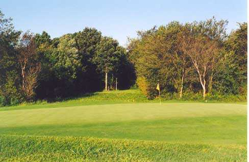 A view of a green at Etna Acres Golf Club