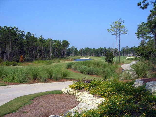 Leopard's Chase Golf Links at Ocean Ridge Plantation: Hole #1