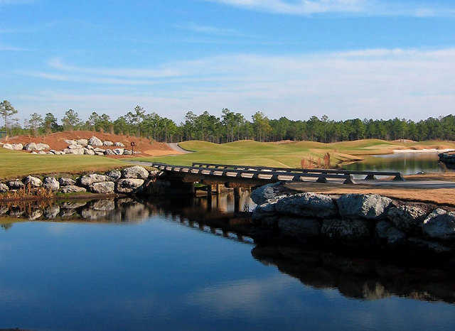 Leopard's Chase Golf Links at Ocean Ridge Plantation: Hole #8