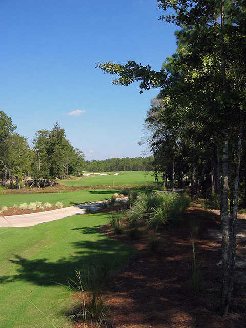 Leopard's Chase Golf Links at Ocean Ridge Plantation: Hole #14