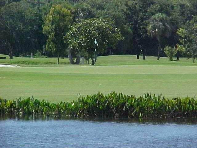 A view of a hole at Plantation on Crystal River
