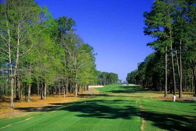 Waterway Hills Golf Club: Oaks No. 4 shows how tight and imposing the trees can get here.