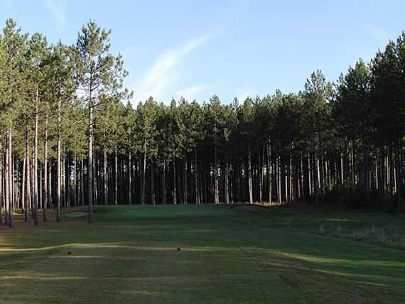 A view from a tee at Hayward National Golf Club