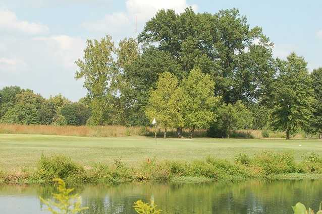 A view of a hole at Forest Park Golf Course