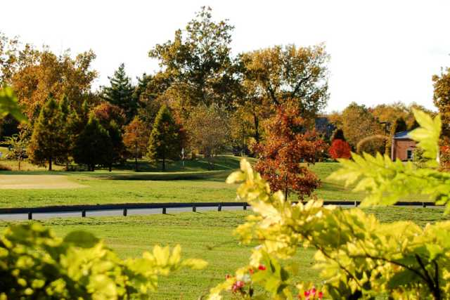 A view of a green at Forest Park Golf Course