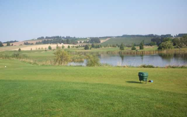 A view from a tee at Quail Valley Golf Course (Nwgolfguys)
