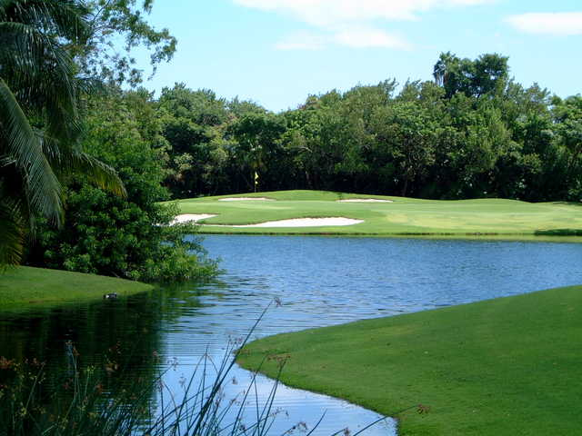 Key West Golf Club: View from #16