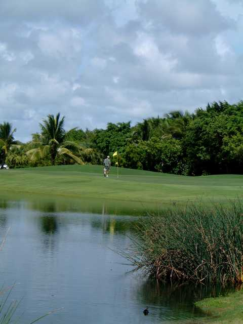 Key West Golf Club: View from #18