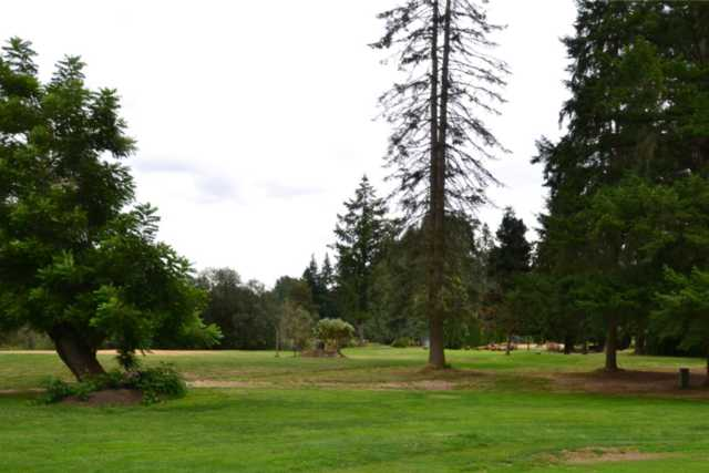 A view from Blue Heron Golf Course