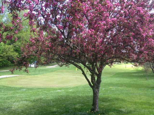 A view of a green at Oneida Community Golf Club