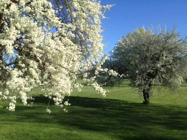 A spring view from Oneida Community Golf Club