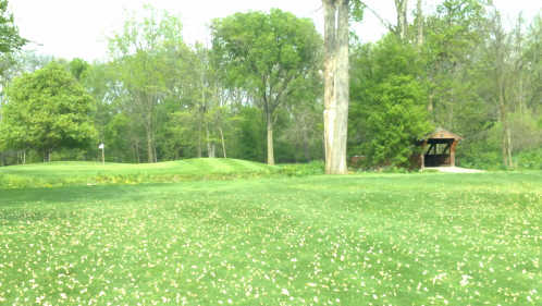 A view from a fairway at London Country Club