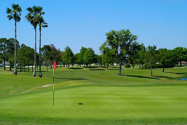 A view of a green at Wedgefield Golf & Country Club