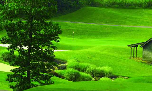 A view of a green protected by a bunker at Tennessee Centennial Golf Course