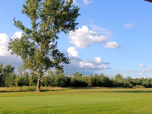 A view of a green at Beaverton Golf Course