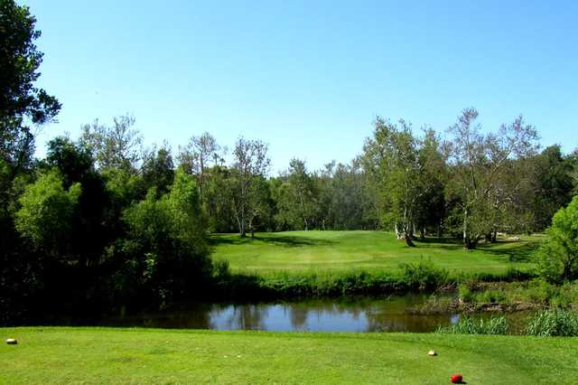 A view from tee #16 at River Island Country Club (Bob Nicholson).