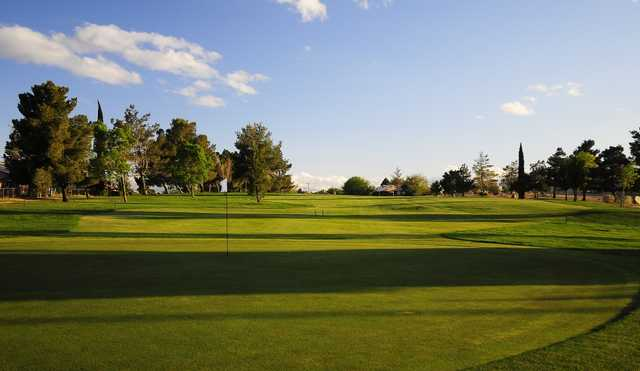 A view of the 8th green at Green Tree Golf Course