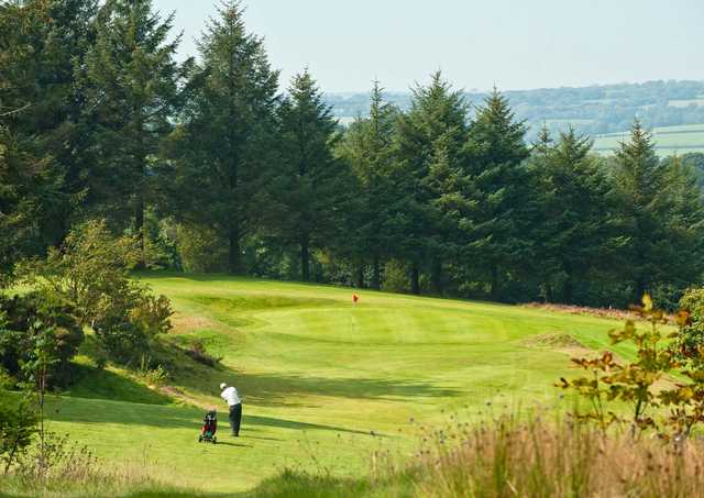 A sunny day view of a green at Carmarthen Golf Club