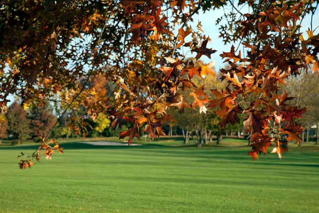 A fall day view from Foxchase Golf Club