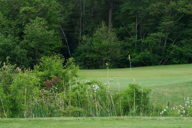 A view of a green from Olde Scotland Links at Bridgewater
