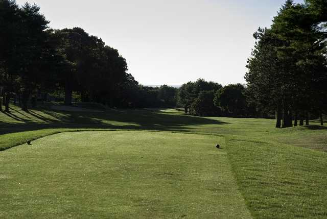 A view from a tee at Midville Country Club