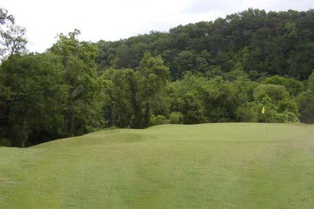 A view of a green at The Golf Club of Tennessee.