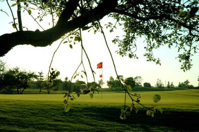 A view of a green at Red from Banty's Roost Golf and Country Club