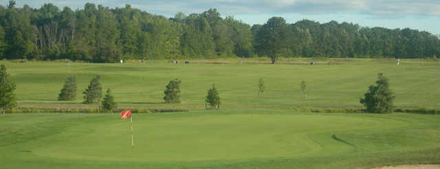 View of green at Cardinal Lakes Golf Club