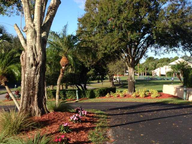 A view from Gator Trace Golf & Country Club