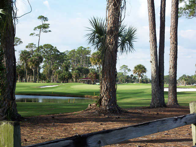 A view from Daytona Beach Golf & Country Club