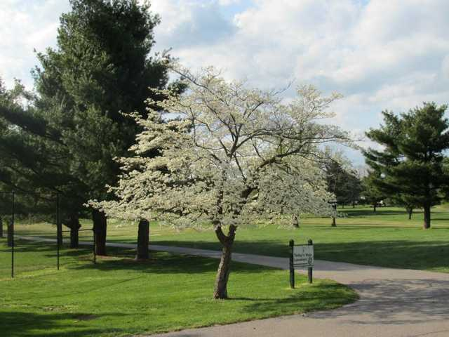A spring view from Gay Brewer Jr. Course at Picadome