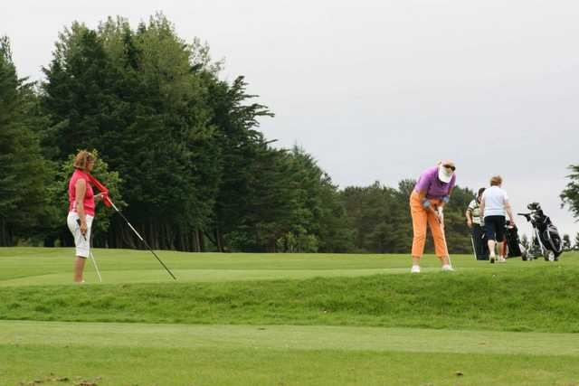 A view from Ennis Golf Club