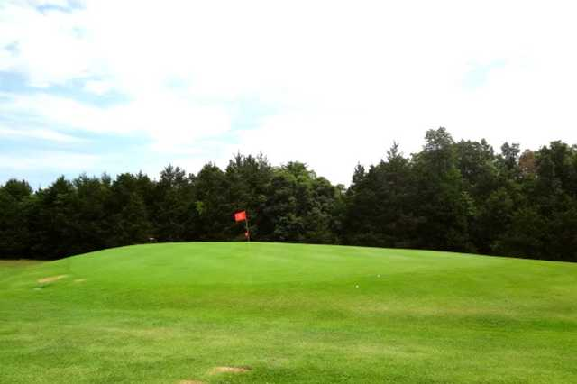 A view of the 8th green at Lost Woods Golf Course