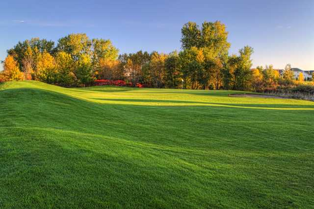 View of a green at Oak Marsh Golf Course