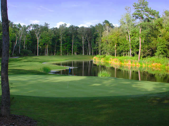 Wescott Plantation's Oak Forest Nine: View from 8th hole