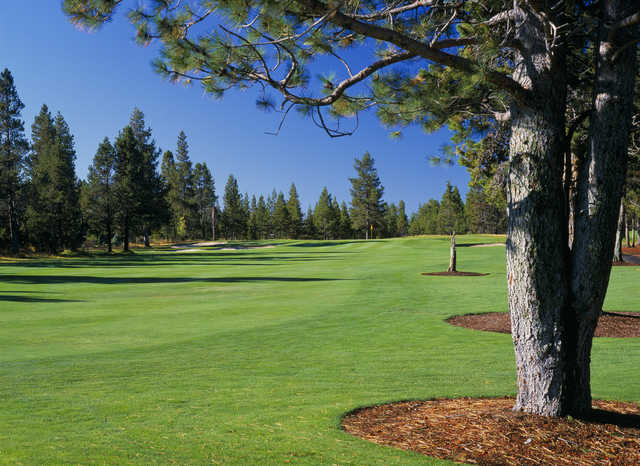 Sunriver Woodlands: View from #4