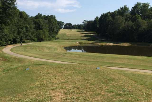 A view from tee #16 at Holly Tree Country Club
