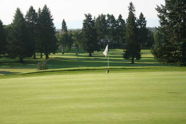 A view of the 3rd green at Cameron from Buffalo Hill Golf Club