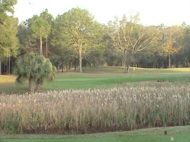 A view from a tee at Wildwood Country Club