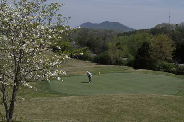 A spring view of a hole at Three Ridges Golf Course