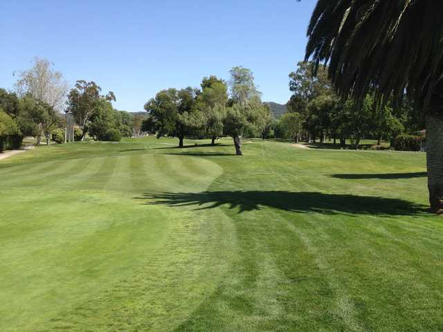 A sunny day view from Los Robles Greens Golf Course